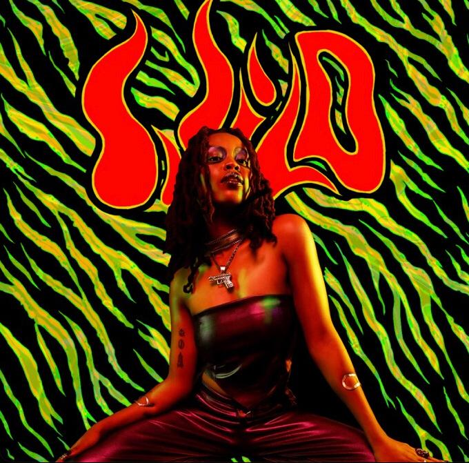 """Lady Donli Drops Her 6-Track EP titled """"Wild"""""""