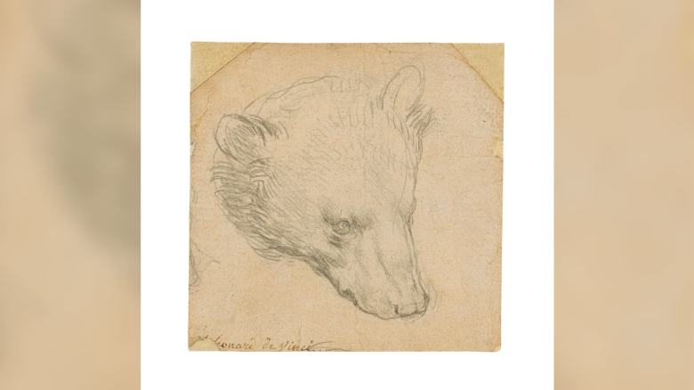 'Small but magnificent': Tiny Leonardo da Vinci sketch fetches over $12M