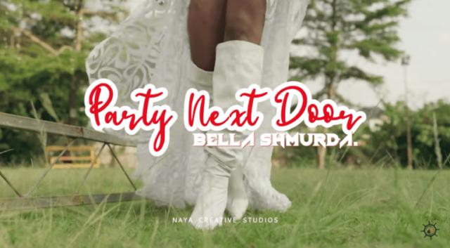 "Dangbana Republik & Bella Shmurda Delivers Colourful Video for ""Party Next Door (Alternate)"""